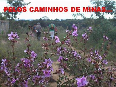 CAMINHADAS NA NATUREZA 2018 - CIRCUITO CAMINHO DE SABARABUYU 28-07-2018 8.jpg
