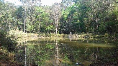 Lago 1 1.jpg