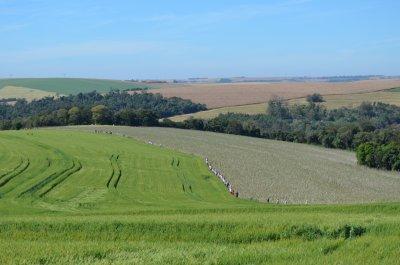 Circuito Rota das Agroindústria