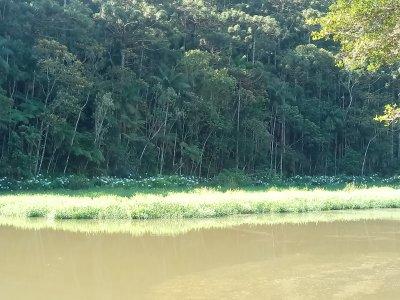 FLONA - lago.jpg