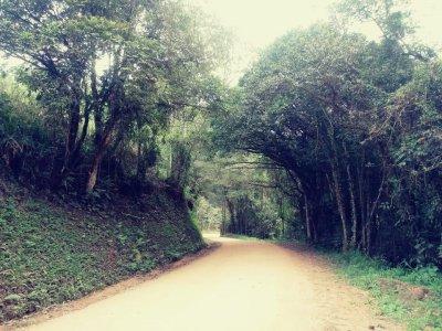 Caminho 3.jpg